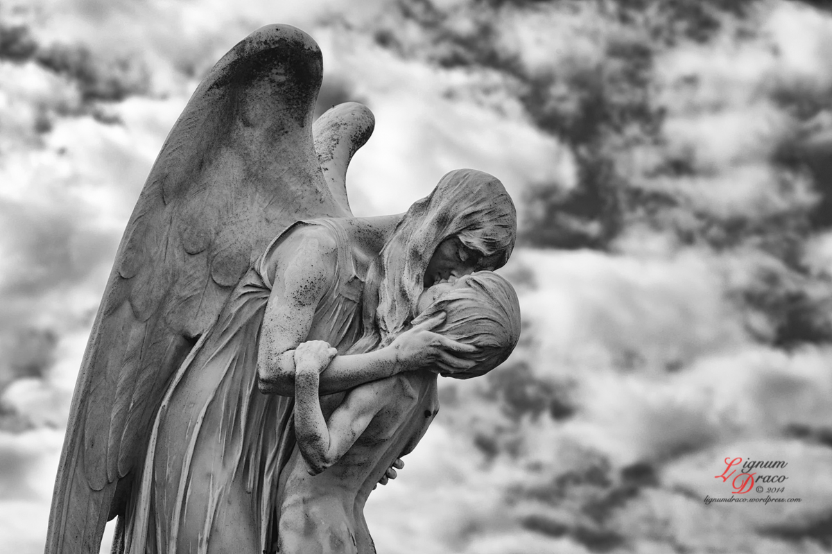 In the arms of the angel 1