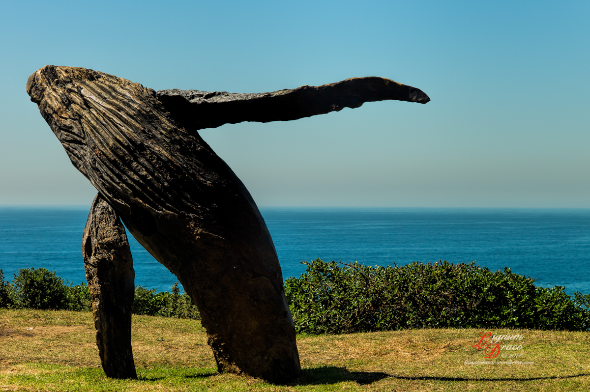 sculpture by the sea 42