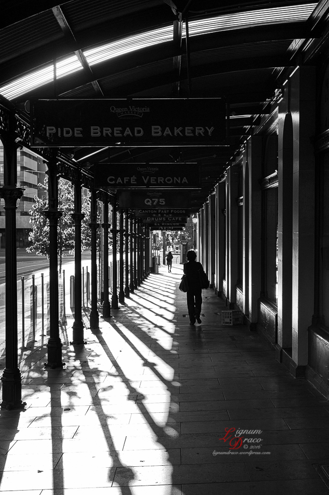 A Melbourne Life 13