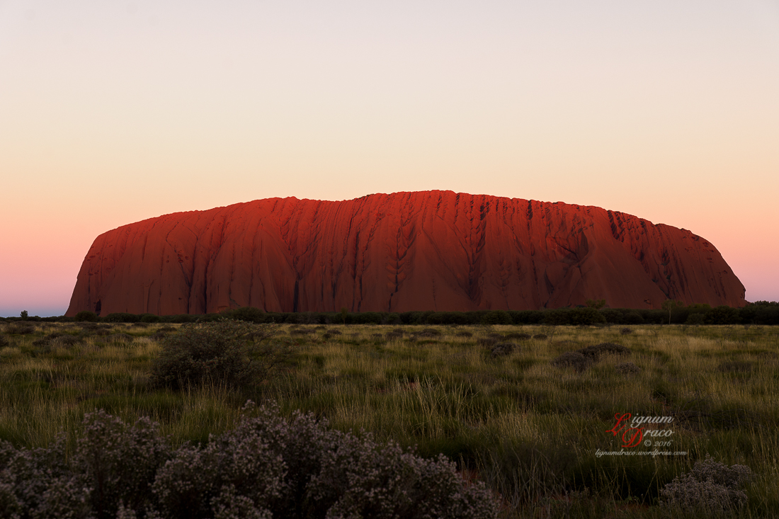 Moonlight Serenade at Uluru 4