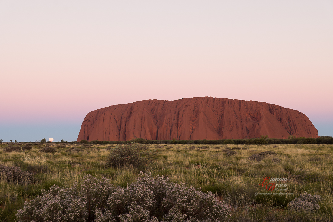 Moonlight Serenade at Uluru 6