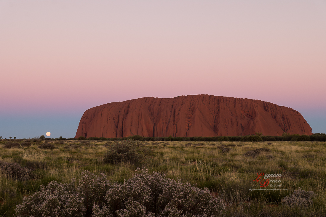 Moonlight Serenade at Uluru 7