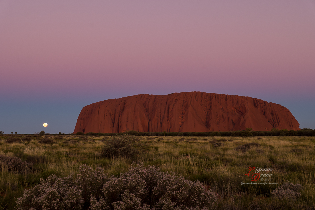 Moonlight Serenade at Uluru 9