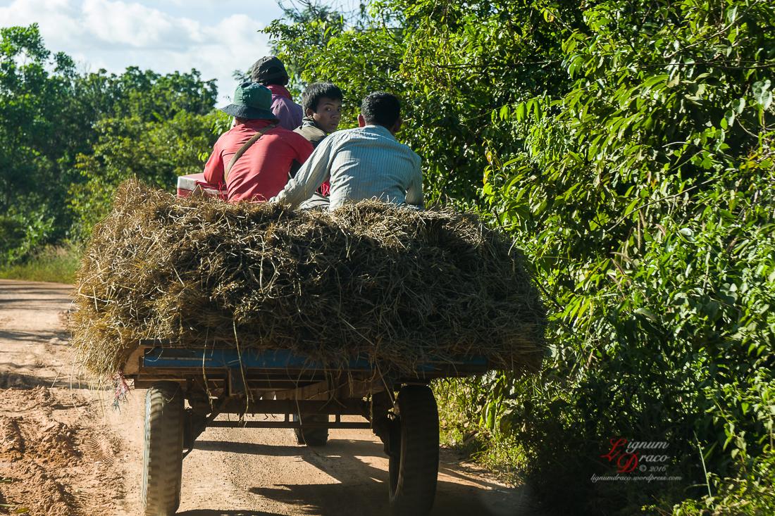 cambodia-008a